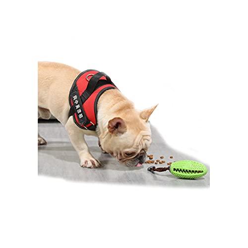 JQER Hundespielzeug - Natürliche Gummi Hund Zahnbürste Hund...