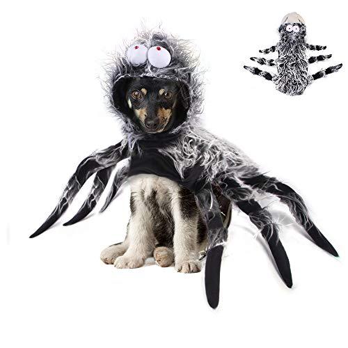 Haustier-Halloween-Kostüm, Spinnen-Kostüm, lustiges...