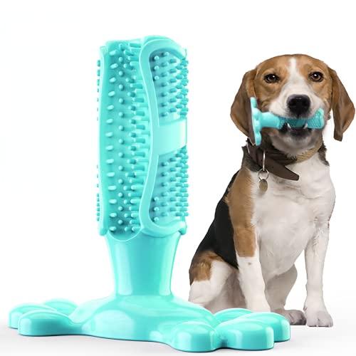 Gummi Hund Zahnbürste Spielzeug Haustier liefert französische...