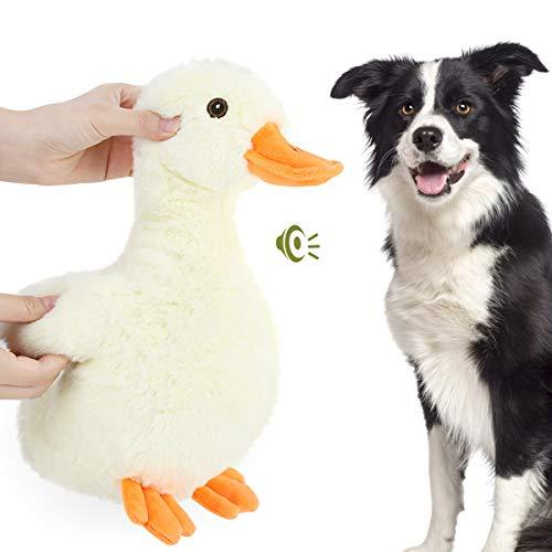 Pawaboo Plüsch Hundespielzeug, Ente Plüschspielzeug Sicher...