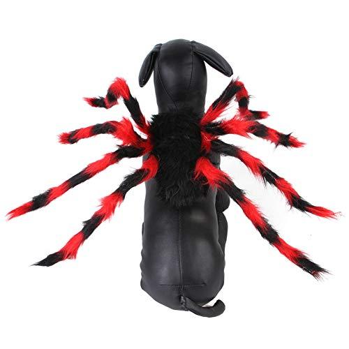 YOUCAI Halloween Haustier Kleidung Spinne Kostüme Hund Katze...