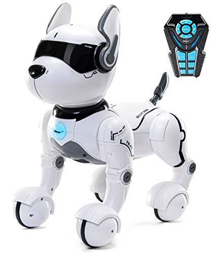 Top Race Smart ROBO Dog