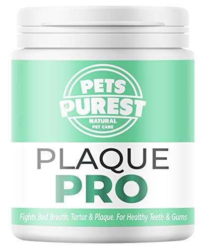 Pets Purest 100% Natürliche Zahnsteinpulver für Hunde & Katzen...