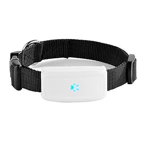 GPS-Tracker für Katzen Hunde Haustiere mit Halsband Wasserdicht...