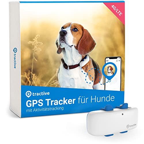 Tractive GPS Tracker für Hunde (2021). Immer wissen, wo dein...