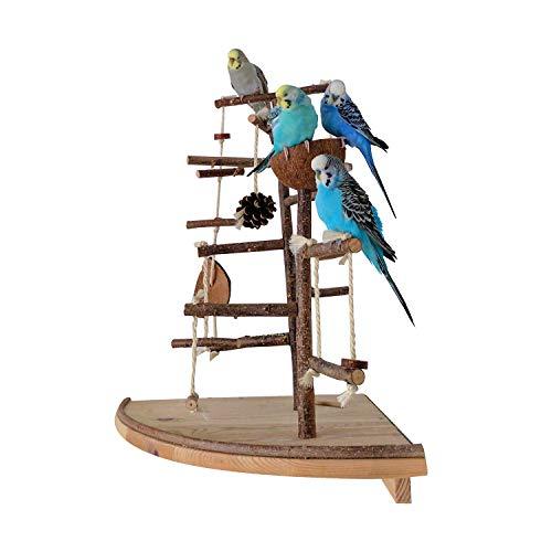 Vogelgaleria Premium Vogelspielplatz groß für die Wand-Montage...