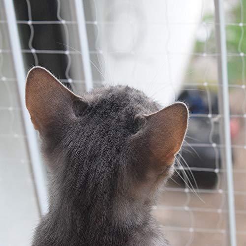 Katzenschutznetz für Balkon & Fenster, transparentes Schutznetz...