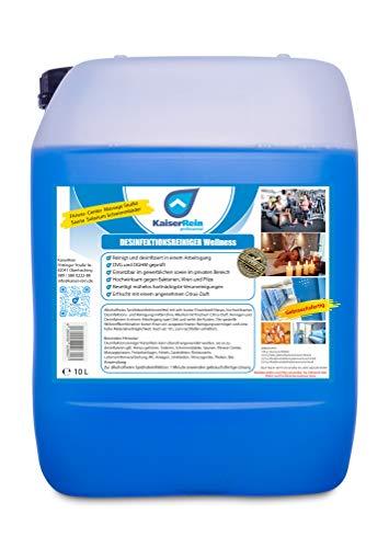 Desinfektionsreiniger Wellness/Spa 10 L Kanister zur Reinigung...