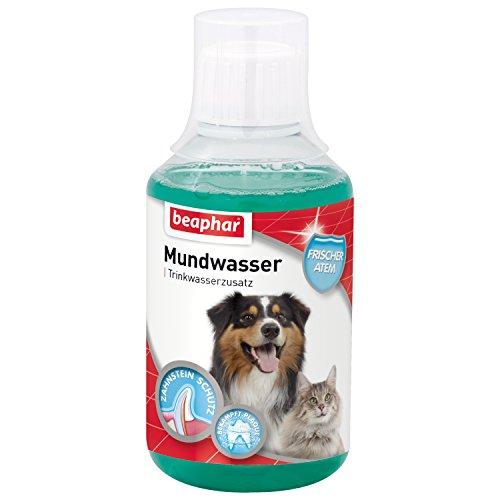 Mundwasser für Hunde & Katzen | Trinkwasserzusatz gegen...