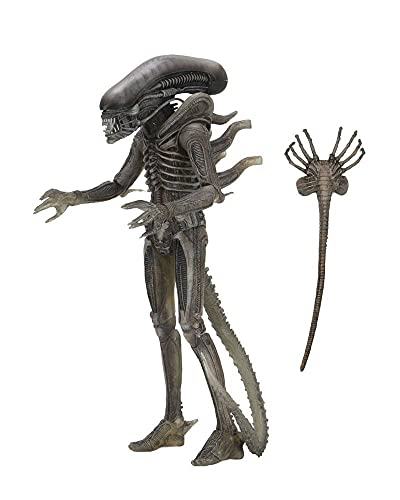 Alien NECA Xenomorph 40th Anniversary, H857800