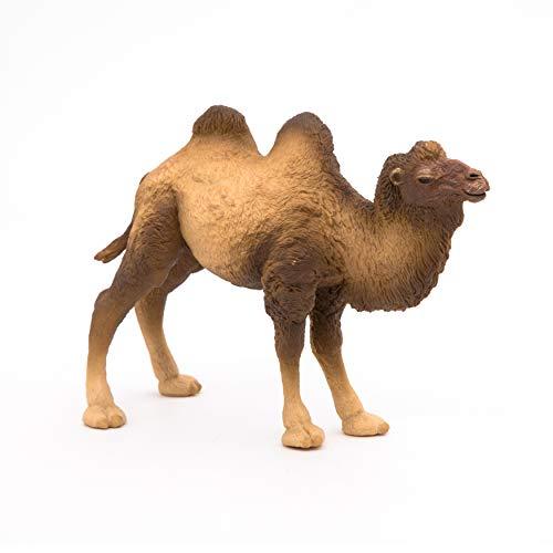 Papo 50129 Baktrisches Kamel WILDTIERE DER Welt Figur, Mehrfarben