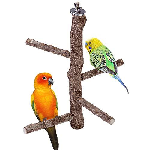 ACBungji Vögel Sitzstangen aus Naturholz Vogelspielplatz...