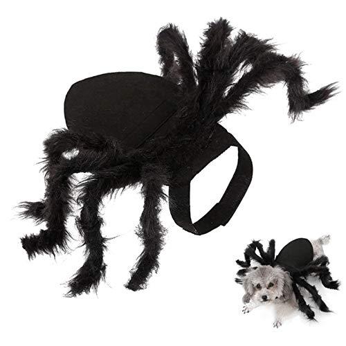 Halloween Spinne Haustier Kostüm, Halloween Cosplay Kostüme...