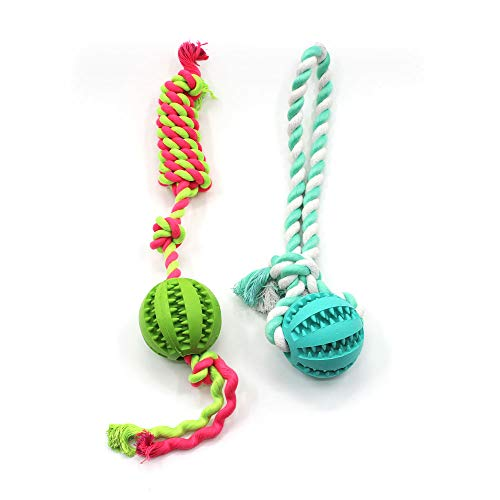 Naturgummi Interaktives Hundespielzeug Ball mit Schnur –...