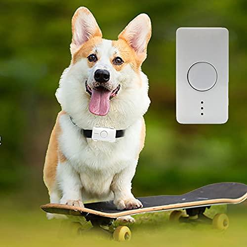 NXL Pet Tracker Katze Hund GPS-Tracking-Kragen Mit Unbegrenzter...