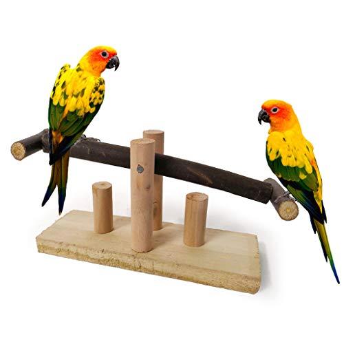 Chenso Bird Spielzeug, Papagei Biss Spielzeug, Holz Wippe...
