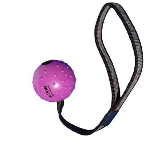 WEPO Hundespielzeug - Schleuderball mit Seil aus Naturkautschuk...