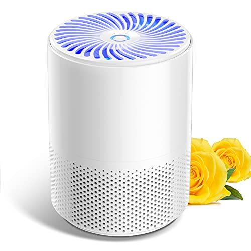 Luftreiniger für zu Hause mit echten HEPA-Filtern,geräuscharmen...