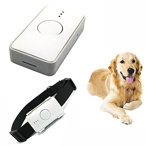 NXL Echtzeit GPS/GSM Tracker-System Für Katzen Hunde FREIE APP...