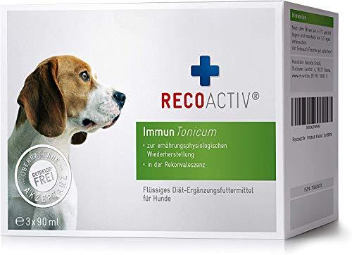 RECOACTIV® Immun Tonicum für Hunde, 3 x 90 ml, zur Vorbeugung...