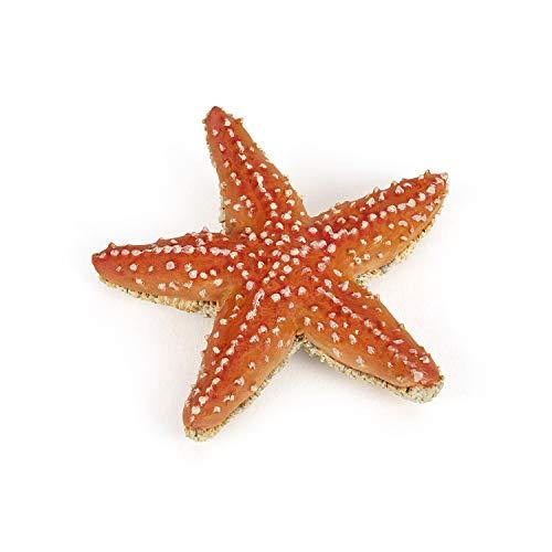 Papo- Seestern das Universum Marin Figur, 56050, Mehrfarbig