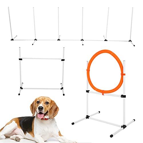 Hunde Agility Set, Verstellbare Dog Activity Agility Ring...