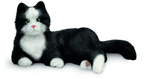JOY FOR ALL, Zeitlose, Innovative Haustier-Begleiter, Tuxedo-Katze, lebensecht &...
