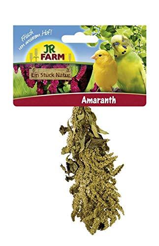 Amaranth  Einzelfutter für alle Wellensittiche, Kanarien und...