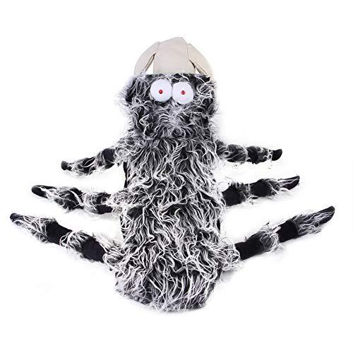 Urhause Hund Spinne Kostüm, Halloween-Kostüm für Hunde und...
