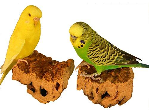 VogelKing Korksitzbrett quadratisch in den Größen S, M, L