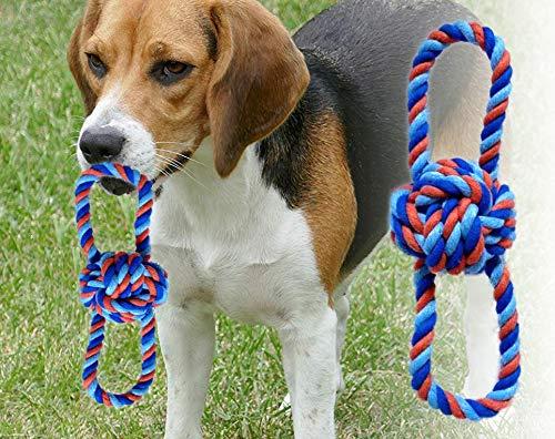 Hundespielzeug - Wurfball mit zwei Schlaufen - Größe XXL -...