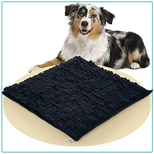 PEPPR the STRAY® Schnüffelteppich für Hunde 70x70cm  ...