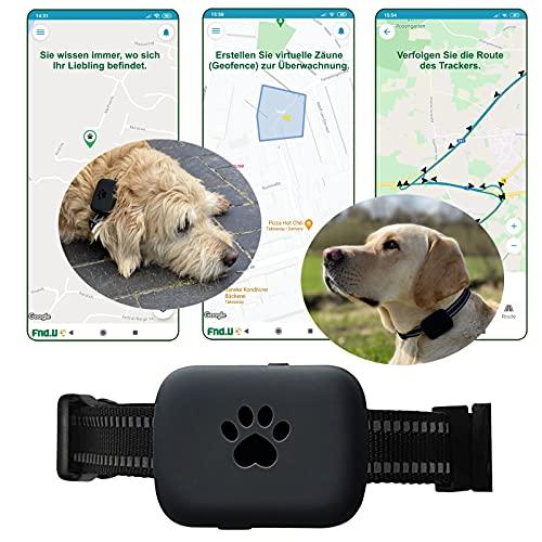 Fnd.U Guard GPS Tracker für Hund, Katze, Ortung, Peilsender mit...