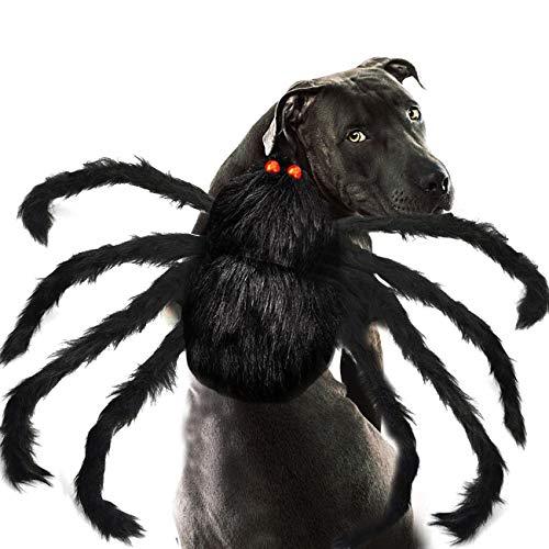 Changeary Halloween-Kostüm für Katzen und Hunde,...