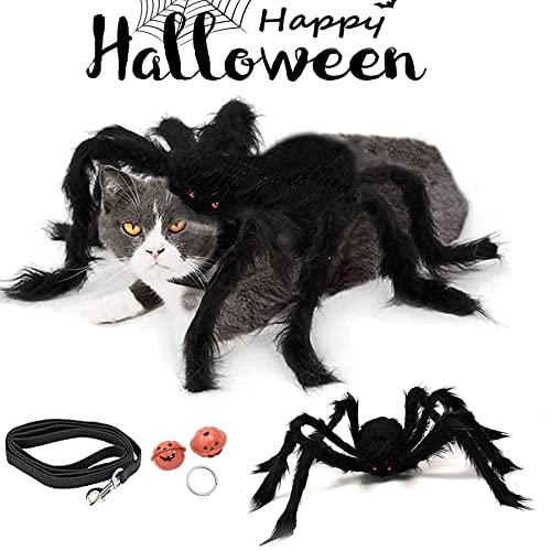 Hund Katze Spinne Kostüme,Halloween Haustier...