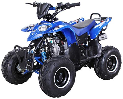 Kinder Quad S-5 Polaris Style 125 cc Motor Miniquad 125 ccm Razer...