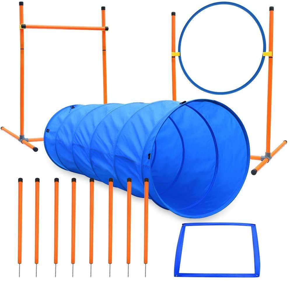 Ausrüstung für den Agility-Kurs für Hunde, Starter-Kit für...