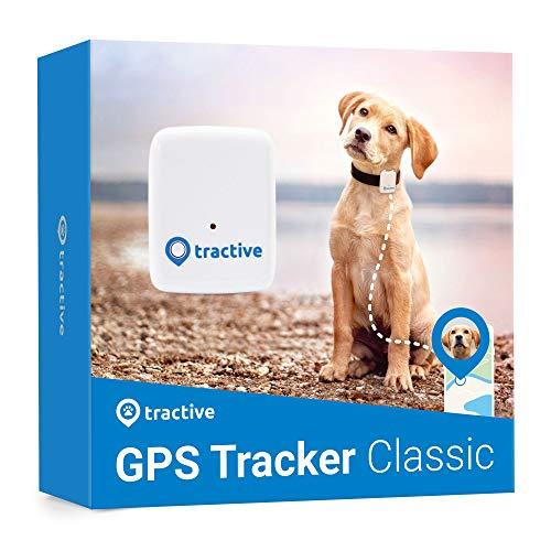 Tractive GPS Tracker für Hunde - Peilsender mit unlimitierter...