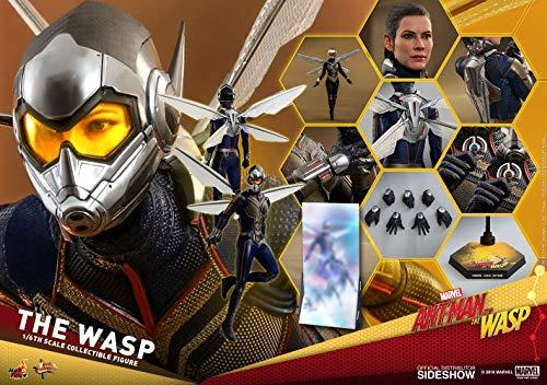 Hot Toys 1:6 Die Wespe von Ant-Man und die Wespe.