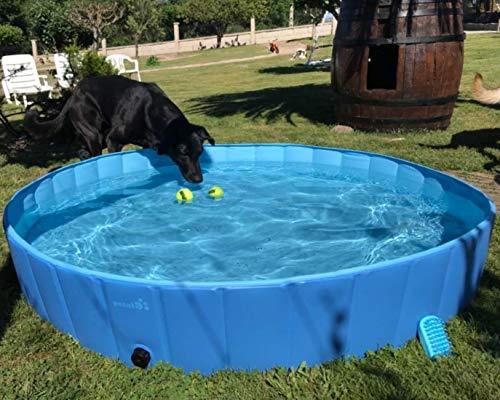 pecute Hundepool Schwimmbad Für Hunde und Katzen Swimmingpool...