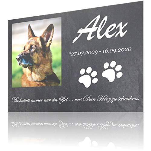 SCHILDER HIMMEL Gedenktafel für Hund & Katze mit Foto Wunschbild...