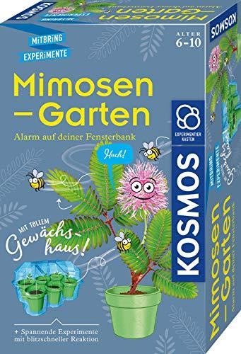 KOSMOS 657802 Mimosen-Garten, Pflanzen züchten und erforschen,...