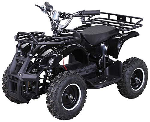 Actionbikes Motors Kinder Elektro Miniquad ATV Torino 1000 Watt...