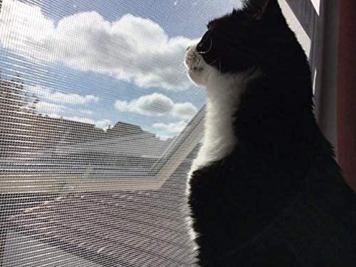 BASHI Fensterschutz für Katze,...