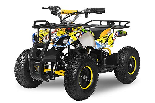 Elektro Kinderquad Torino 1000W 48V 6' Miniquad Quad ATV Bike...