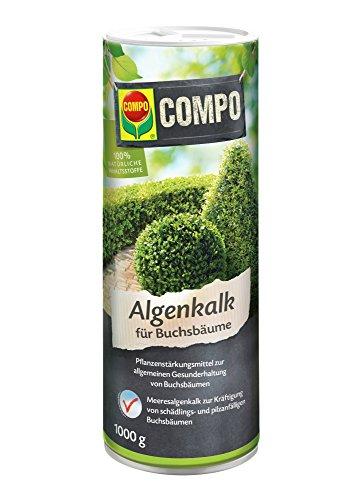 Compo Algenkalk für Buchsbäume, Pulver,...