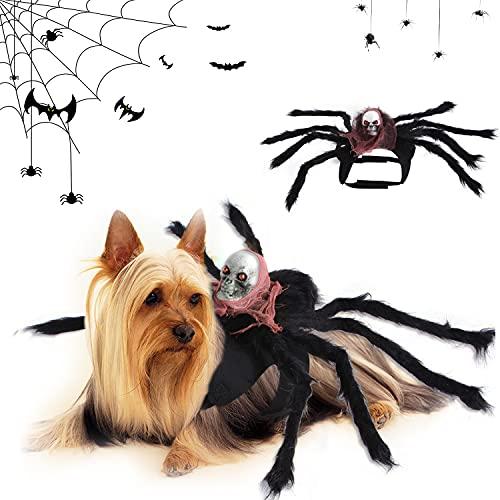 Halloween Spinne Haustier Kostüm, Halloween Party Haustier...