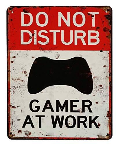 zeitzone Blechschild DO NOT Disturb Gamer at Work Türschild Deko...