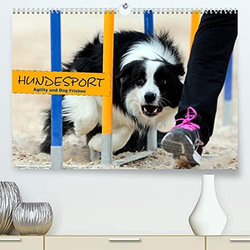 HUNDESPORT - Agility und Dog Frisbee (Premium, hochwertiger DIN...