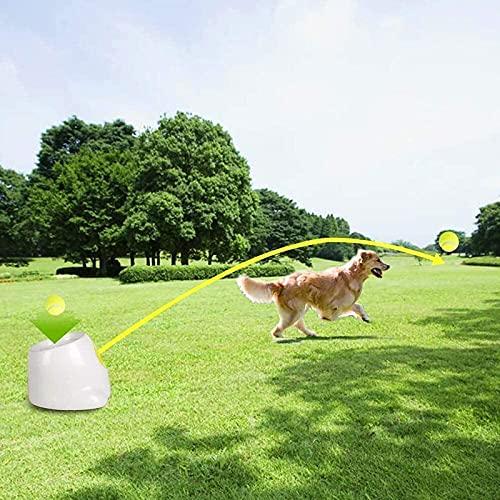 Interaktives Automatisches Ballwerfer-Hundespielzeug,...